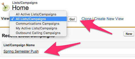 The Lists/Campaigns Home Tab