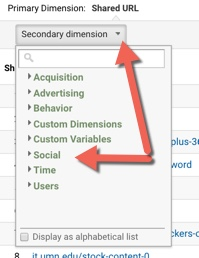the secondary dimension selector with the Social category selected.