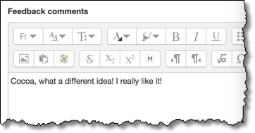 The feedback comments box in the detailed grading view.