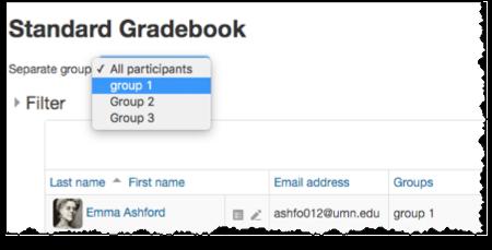 Separate groups drop down menu in the gradebook.