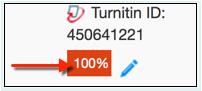 Turnitin originality report score icon