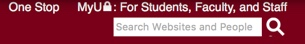 the university's search box in the top right of the website