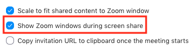 The Show Zoom windows during screen share setting in the Zoom desktop application settings window