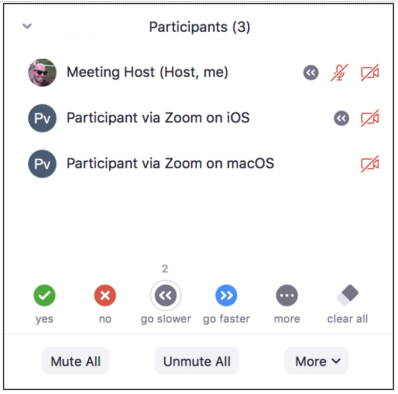 The Zoom meeting host's Participant Panel shows 3 participants, 2 of whom have selected Go Slower.