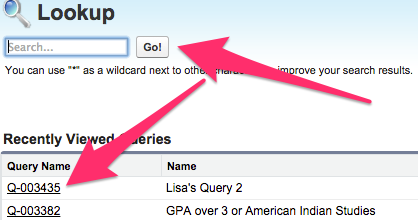The Query Lookup screen