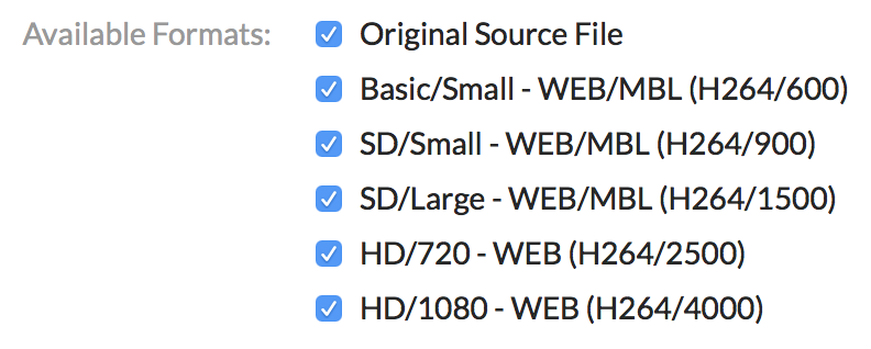 A screenshot showing the available formats on a Kaltura video