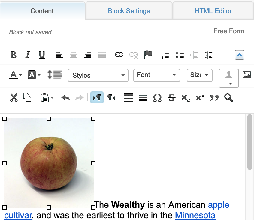 Image Selected in Free Form block editor