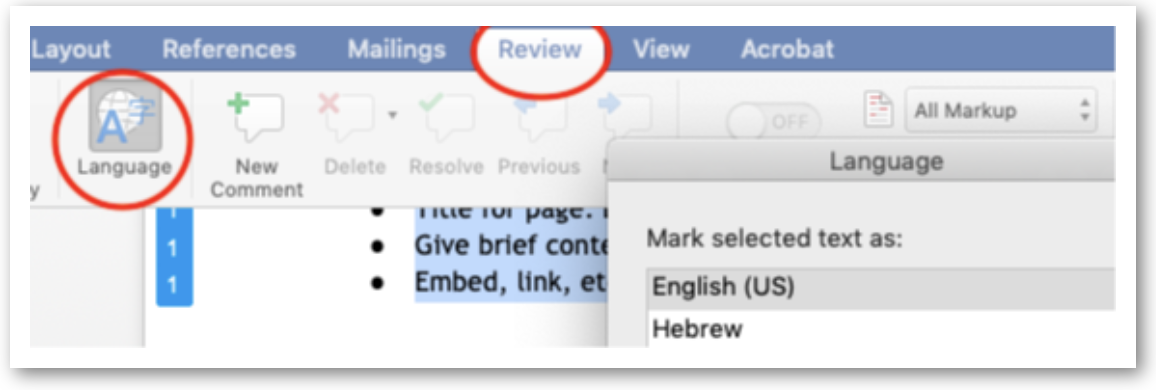 MS Word Review pane selected, then Language.
