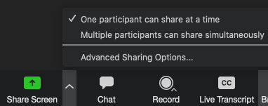 Screen sharing menu in Zoom. The caret near Share Screen is selected. One participant can share at a time is selected.