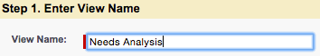"""A screenshot of Step 1 Enter View Name with """"Needs Analysis"""" in the View Name field"""