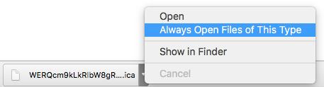 ica file menu