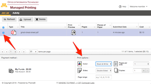 Print interface with the checkbox next the file and the print options highlighted.