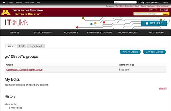 Page for an individual contributor on the IT@UMN site