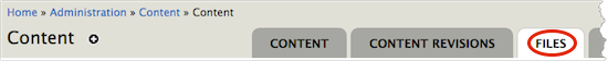 Content page tabbed menu. The tabbed menu includes Content, Content Revisions, Files, etc. The Files tab is highlighted.