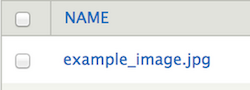 Drupal files page. The Name column is highlighted.