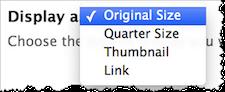 Drupal media display as drop-down menu. Options include Original Size, Quarter Size, Thumbnail, and Link.