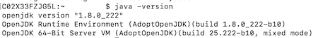 "the text ""java -version"" in the top line, the next line displays the text ""open jdk version 1.8.0_222"". There are two more lines of text with more information about the java installation."