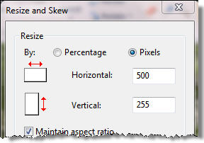 The Resize and Skew dialog box. The Resize options include By, Horizontal, and Vertical.