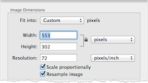 Resize dialog window. The Width field is highlighted.