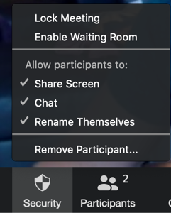 Zoom meeting, security menu expanded. Options: Lock meeting, enable waiting room. Allow participants to: Share screen, chat, rename themselves. Remove participant.